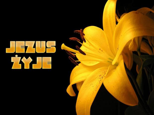 tapety-jezus.prv.pl - najlepsze darmowe tapety chrześcijańskie na komórkę i pulpit :) #jezus #Bóg #tapety
