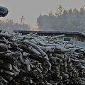 o świcie po drewno... #zima #poranek #drewno #szron