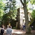 Zdjęcia z wyprawy w Wilczym Szańcu #drzewa #las #bunkry #obelisk