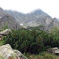#CzarnyStaw #Tatry #góry #natura #turystyka #urlop