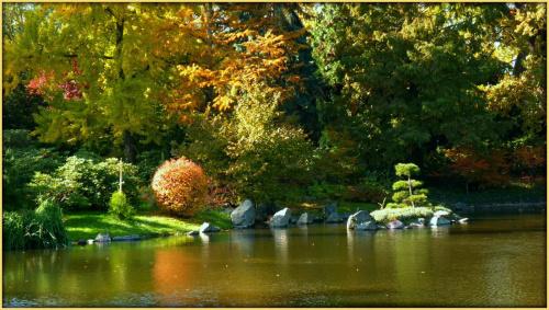 jesien w Ogrodzie Botanicznym #jesien #OgrodBotaniczny #Wrocław