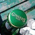 GINGERS ! #piwo #gingers #butelka #makro