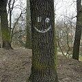 Uśmiechnij się (Bydgoszcz) #drzewa #przyroda #uśmiech