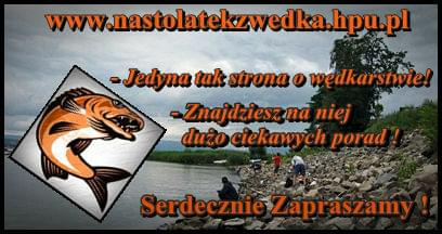 http://www.nastolatekzwedka.hpu.pl