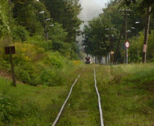 #mazowieckie #parowóz #Piaseczno #Piaseczyńska_Kolej_Wąskotorowa #Px48 #wąskotorówka