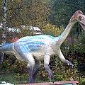 Dinozaur, Jura Park Bałtów ;) #JuraPark #Bałtów #dinozaury