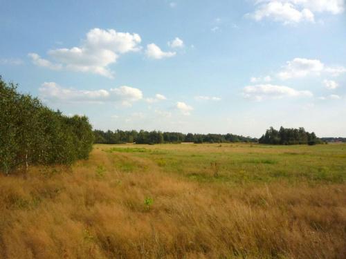 #natura #krajobraz #przyroda #łąka #widok #widoki #krajobrazy #las #lasy #pola
