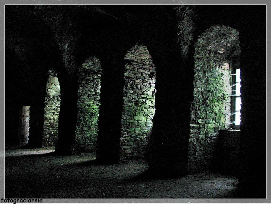 Zamek Bolków i Świny 240.jpg