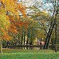 Jesień w parku w Strzelcach Opolskich #jesień #park #StrzelceOpolskie