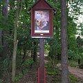 Foto: Sylwester Nicewicz. Droga Krzyżowa na Śmierciowej Górze. Kozioł - Wincenta #Święty #Brunon #kolno #kurpie #podlaskie #Droga #góra #kozioł #Krzyżowa #Kwerfurtu #nicewicz