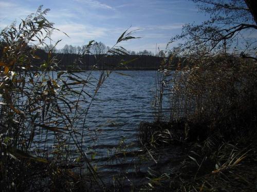 #woda #natura