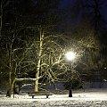 Park pszczyński #park #ławka #latarnia