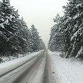 zima... drogowcy jak zawsze zaskoczeni #zima #snieg #drzewa #widok #plener
